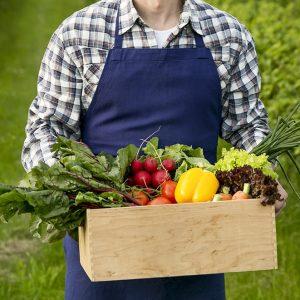 nuestras cestas de verdura ecologica recién cosechada