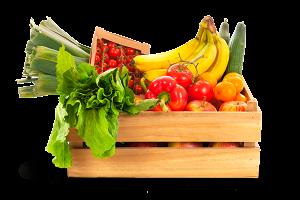 cesta-verdura-ecologica-zaragoza