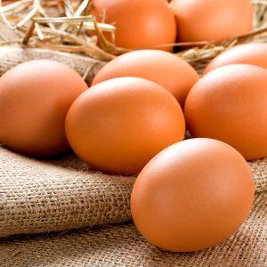Huevos ecologicos a granel en Zaragoza