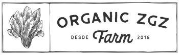 Cestas verdura y fruta ecologica en Zaragoza